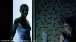 image from Goodnight Mommy by Veronika Franz and Severin Fiala